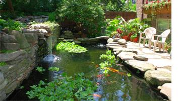 Koiteich Gartenteich Schwimmteich Bachlauf